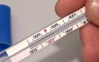 Можно ли пить имбирь при температуре