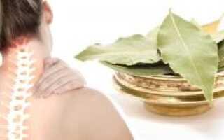 Способы использования лаврового листа для лечения остеохондроза