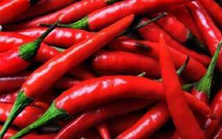 О пользе и противопоказаниях красного перца