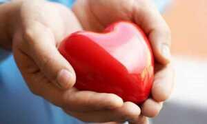 Как влияет имбирь на сердце