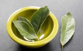 Как правильно чистить сосуды лавровым листом