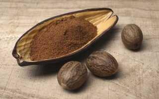 Молотый мускатный орех: как выбирать и где применять