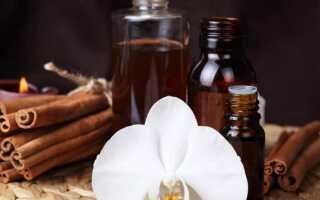 Полезные свойства и способы применения эфирного масла корицы