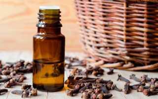 Эфирное масло гвоздики — свойства и применение
