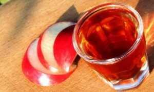 Настойка корня калгана — рецепты и применение
