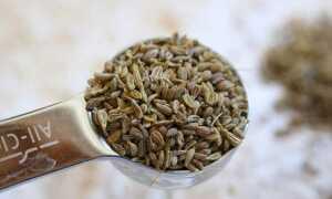 Семена аниса — лечебные свойства и противопоказания