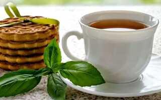 Рецепты чая с базиликом — для пользы тела и души