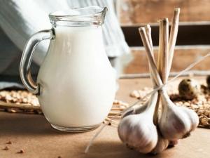 Тплое молоко с чесноком за ночь облегчат состояние Рецепты напитков от простуды